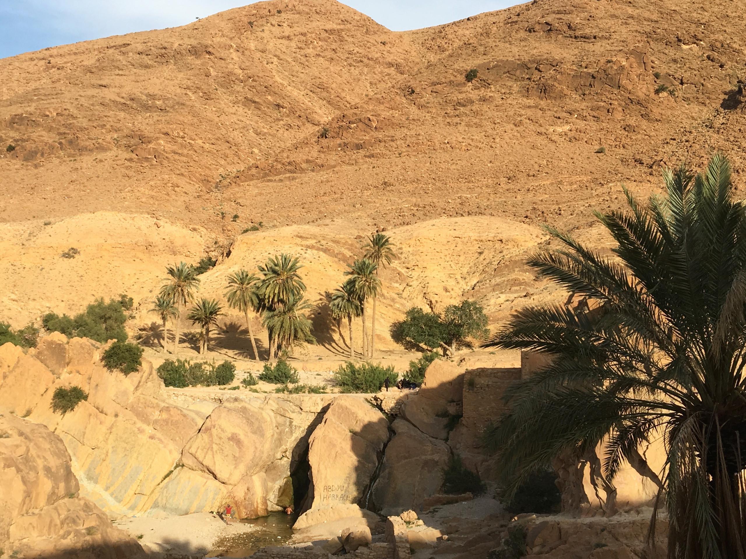 Que visiter à Bousaâda ?